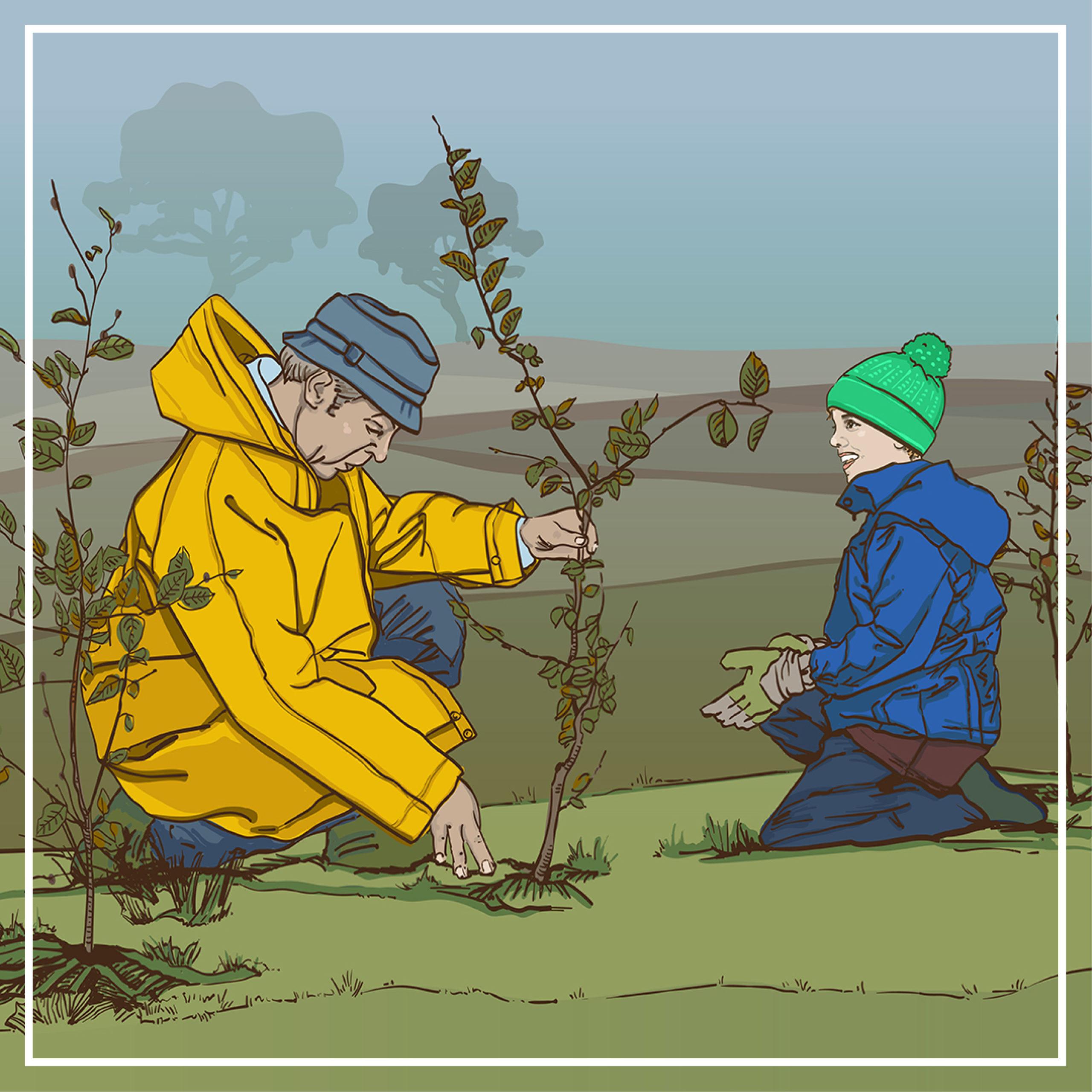 Sharepics: Animierte Illustrationen für den BUND e.V.
